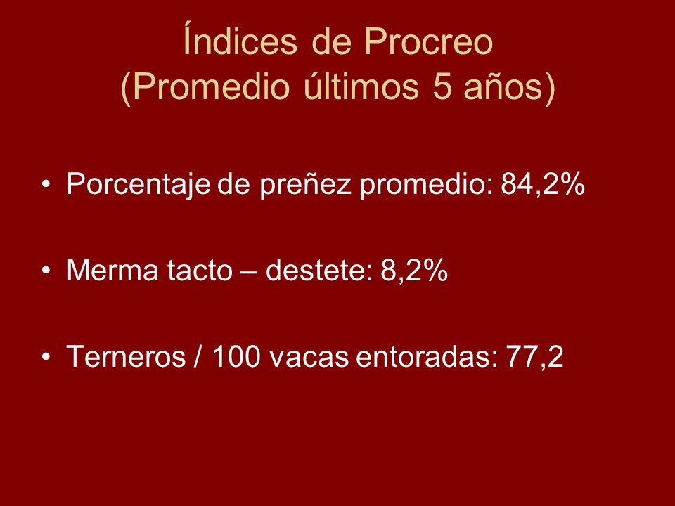 Índices de Procreo (Promedio últimos 5 años) Porcentaje de preñez promedio: 84,2% Merma tacto – destete: 8,2% Terneros / 100 vacas entoradas: 77,2