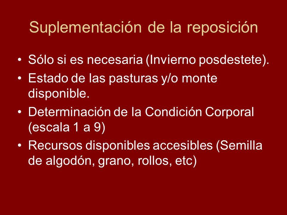 Suplementación de la reposición Sólo si es necesaria (Invierno posdestete). Estado de las pasturas y/o monte disponible. Determinación de la Condición