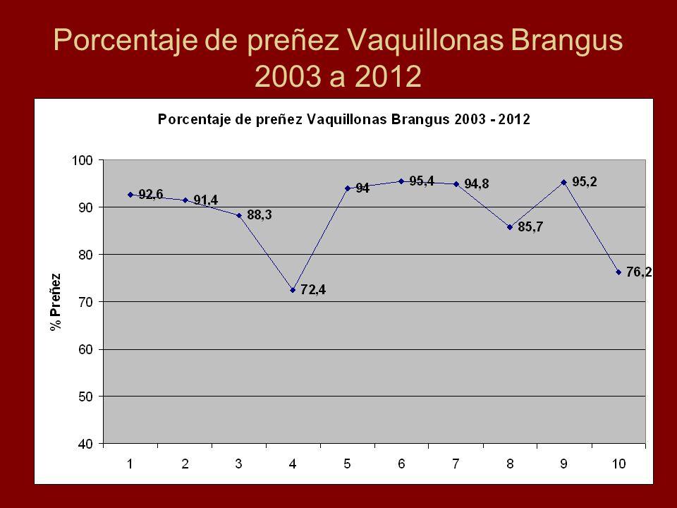 Porcentaje de preñez Vaquillonas Brangus 2003 a 2012