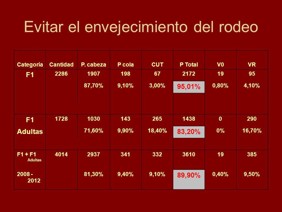 Evitar el envejecimiento del rodeo CategoríaCantidadP. cabezaP colaCUTP TotalV0VR F1 228619071986721721995 87,70%9,10%3,00% 95,01% 0,80%4,10% F1 17281