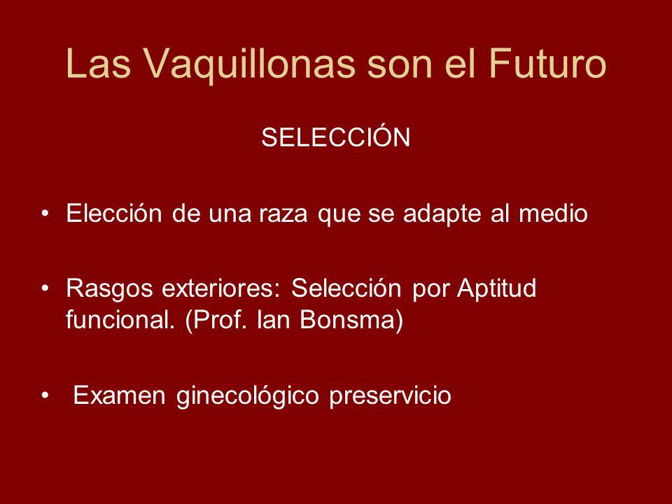 Las Vaquillonas son el Futuro SELECCIÓN Elección de una raza que se adapte al medio Rasgos exteriores: Selección por Aptitud funcional. (Prof. Ian Bon