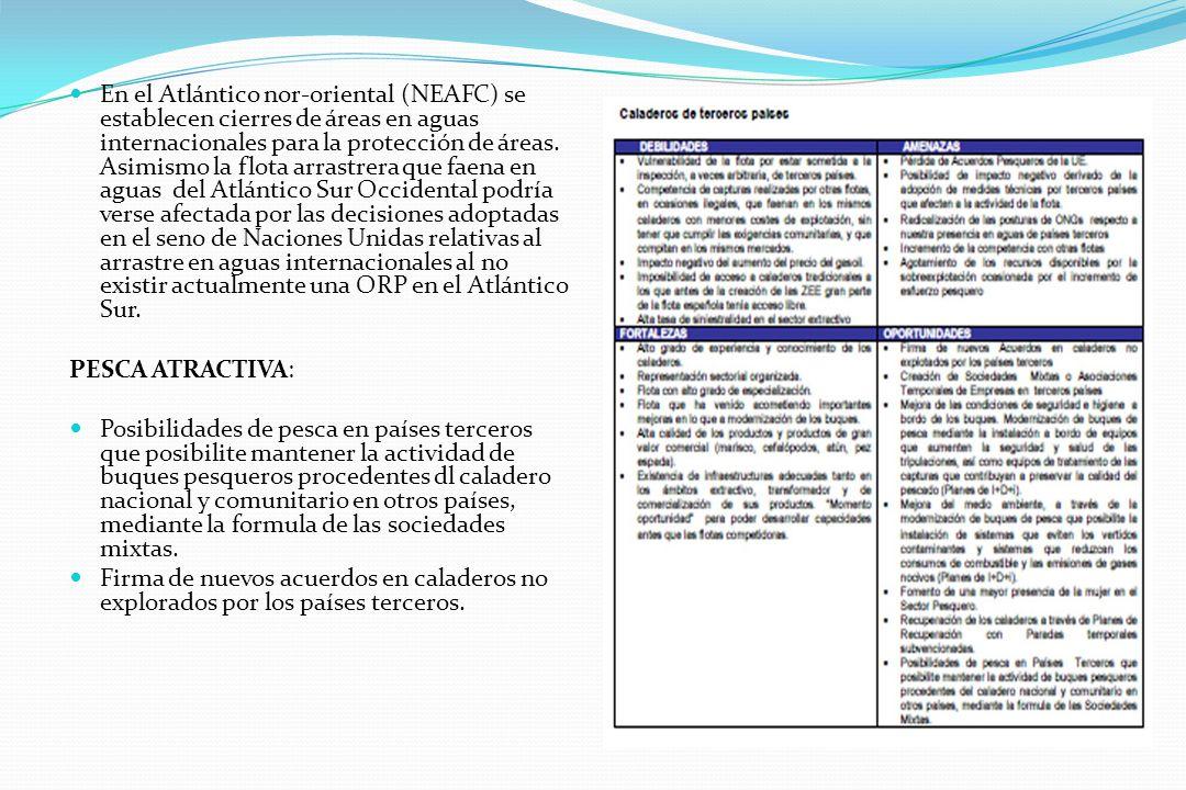En el Atlántico nor-oriental (NEAFC) se establecen cierres de áreas en aguas internacionales para la protección de áreas. Asimismo la flota arrastrera