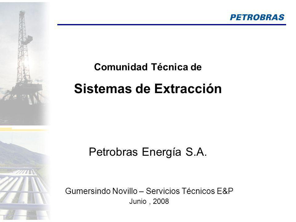 Gumersindo Novillo – Servicios Técnicos E&P Comunidad Técnica de Sistemas de Extracción Petrobras Energía S.A. Junio, 2008