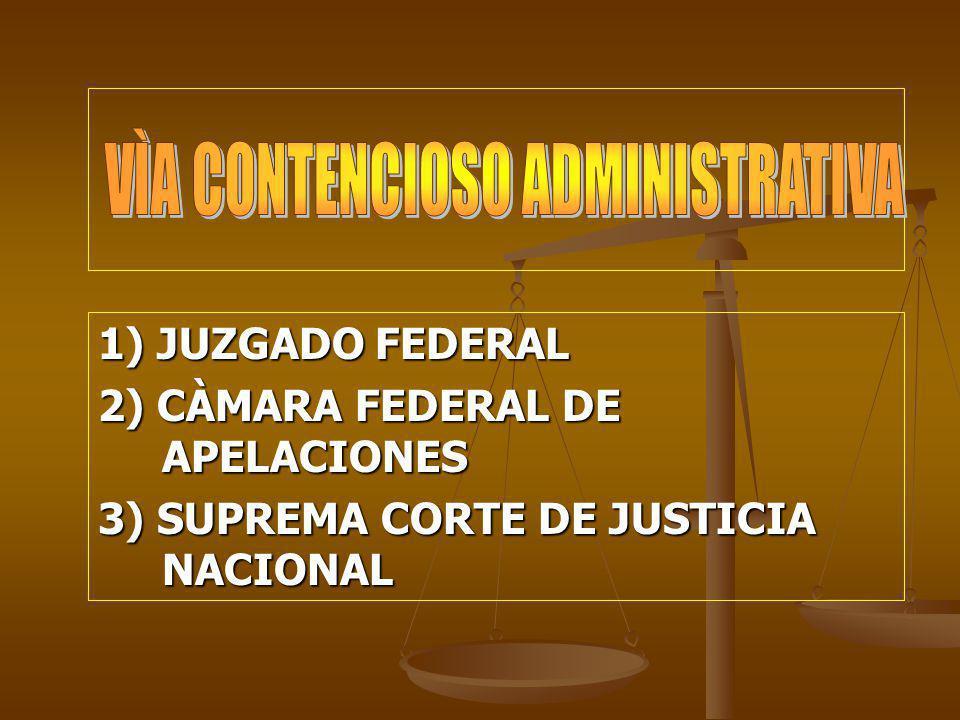 1) JUZGADO FEDERAL 2) CÀMARA FEDERAL DE APELACIONES 3) SUPREMA CORTE DE JUSTICIA NACIONAL