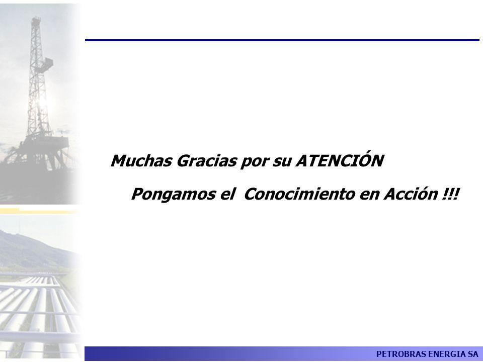 PETROBRAS ENERGIA SA Muchas Gracias por su ATENCIÓN Pongamos el Conocimiento en Acción !!!