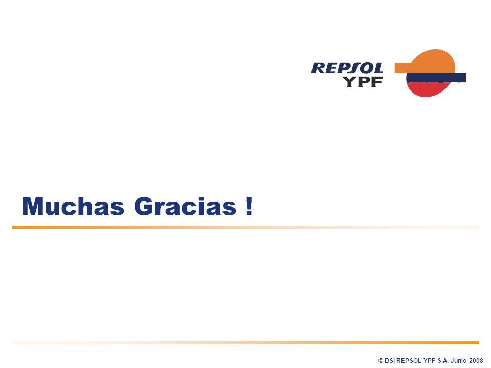 Muchas Gracias ! © DSI REPSOL YPF S.A. Junio 2008