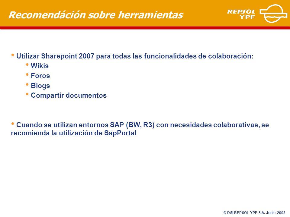 Recomendáción sobre herramientas Utilizar Sharepoint 2007 para todas las funcionalidades de colaboración: Wikis Foros Blogs Compartir documentos Cuando se utilizan entornos SAP (BW, R3) con necesidades colaborativas, se recomienda la utilización de SapPortal © DSI REPSOL YPF S.A.