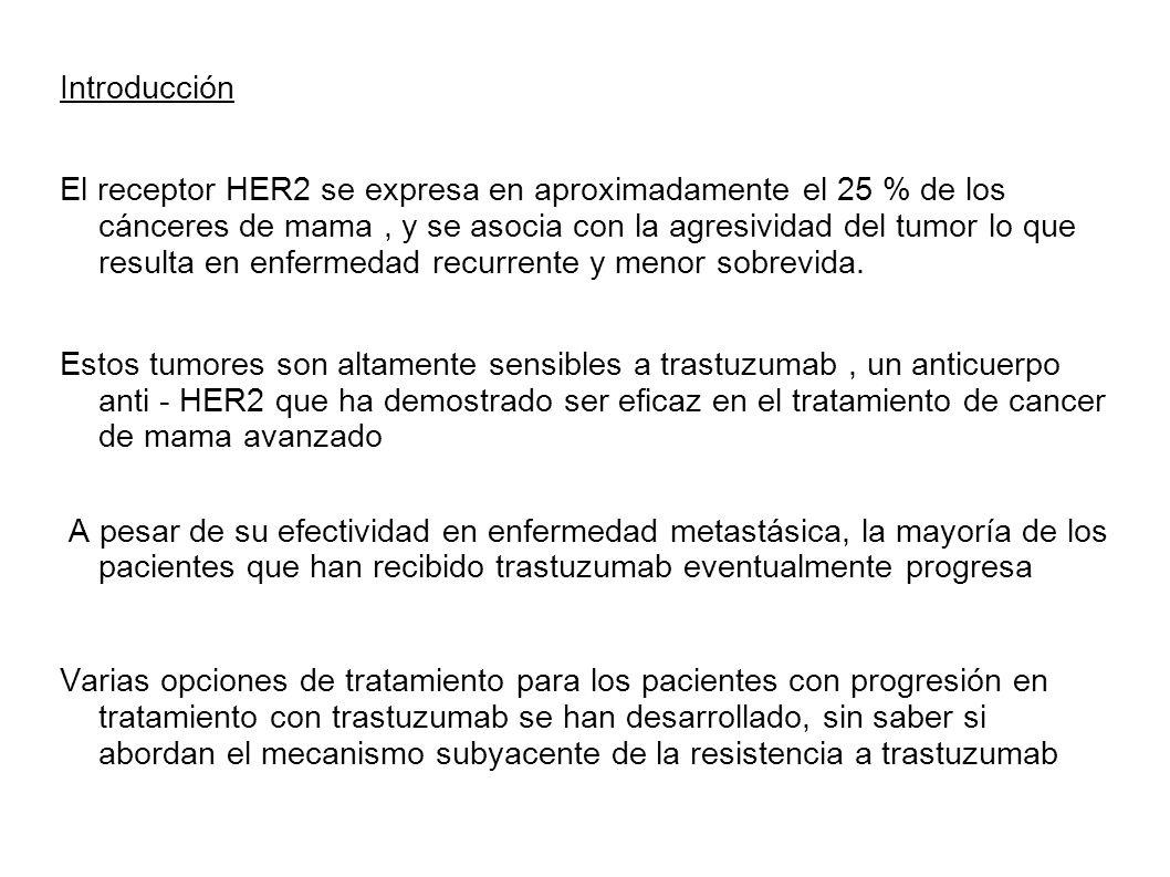 Introducción El receptor HER2 se expresa en aproximadamente el 25 % de los cánceres de mama, y se asocia con la agresividad del tumor lo que resulta e