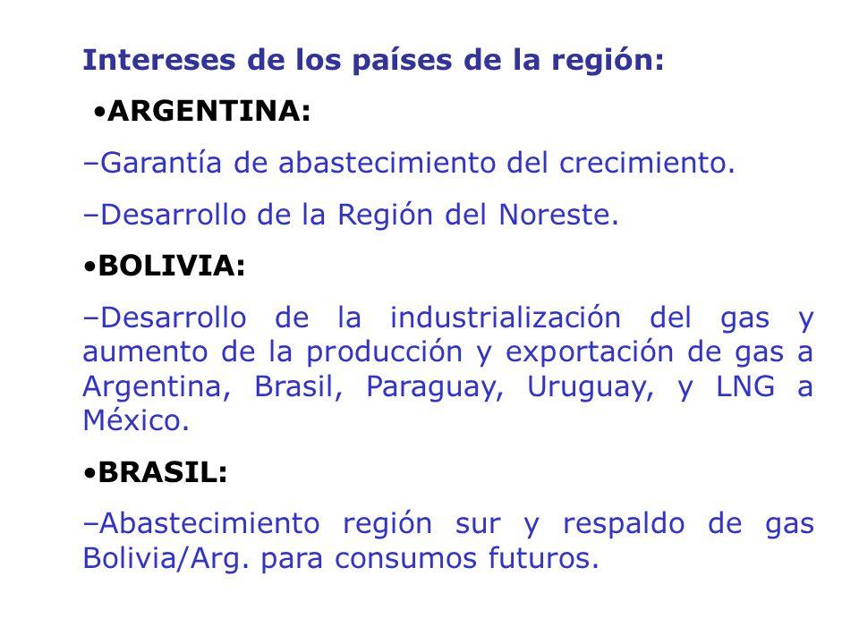 Intereses de los países de la región: ARGENTINA: –Garantía de abastecimiento del crecimiento. –Desarrollo de la Región del Noreste. BOLIVIA: –Desarrol