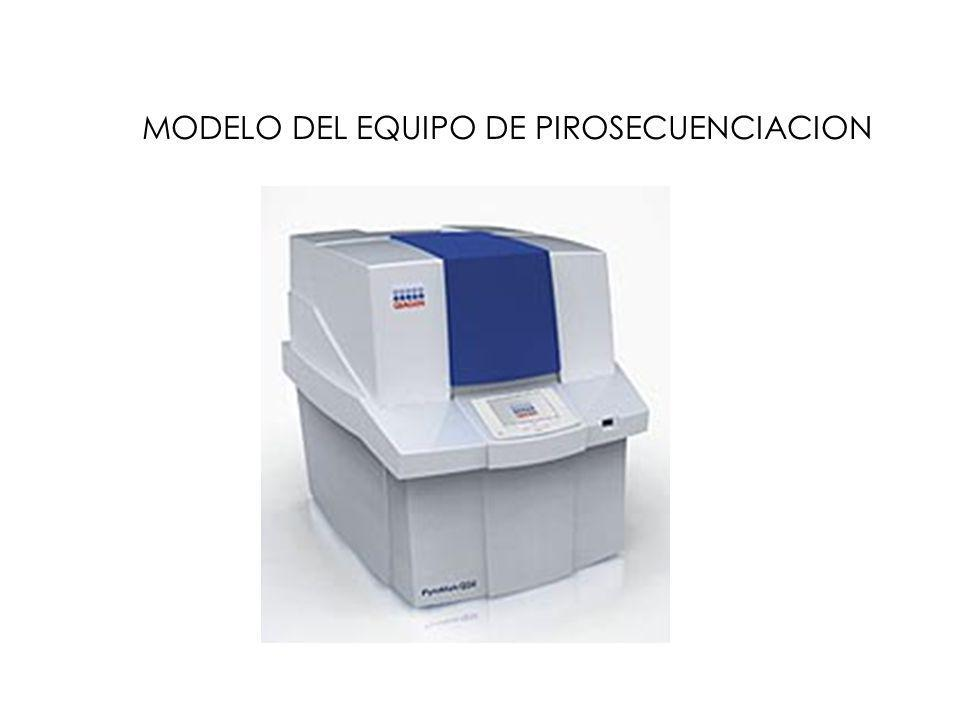 MODELO DEL EQUIPO DE PIROSECUENCIACION