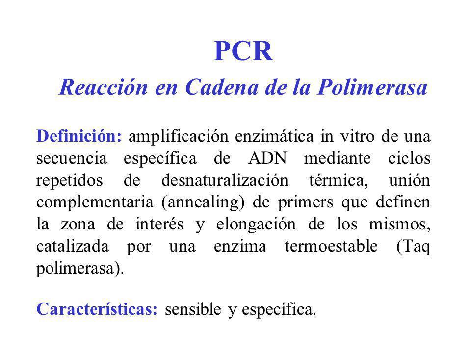 PCR Reacción en Cadena de la Polimerasa Definición: amplificación enzimática in vitro de una secuencia específica de ADN mediante ciclos repetidos de