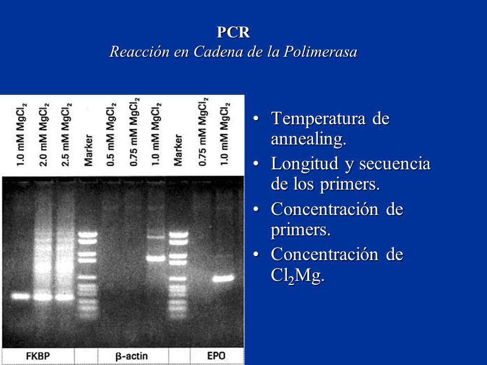 PCR Reacción en Cadena de la Polimerasa Temperatura de annealing.Temperatura de annealing. Longitud y secuencia de los primers.Longitud y secuencia de
