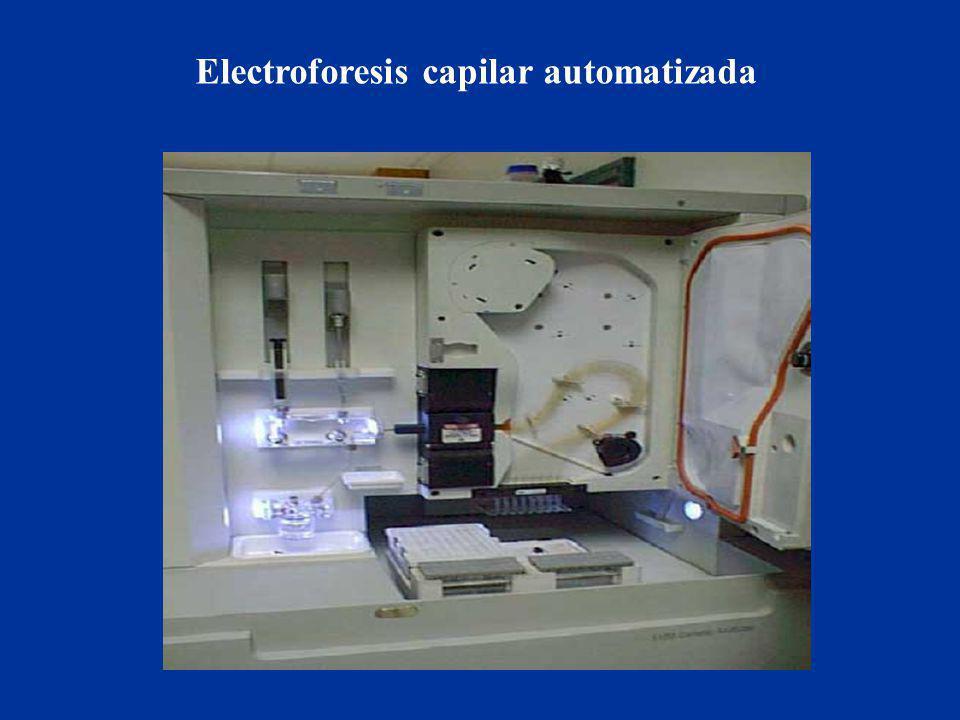 Electroforesis capilar automatizada