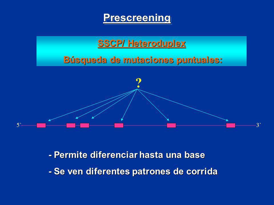 SSCP/ Heteroduplex Búsqueda de mutaciones puntuales: Búsqueda de mutaciones puntuales: 5`3` ? - Permite diferenciar hasta una base - Se ven diferentes