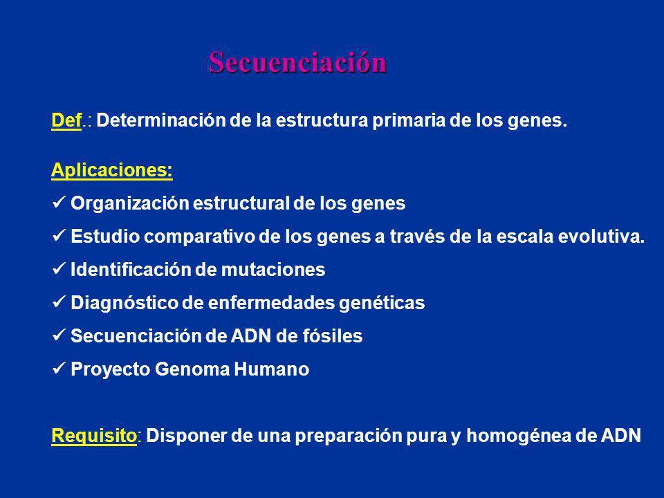 Def.: Determinación de la estructura primaria de los genes. Aplicaciones: Organización estructural de los genes Estudio comparativo de los genes a tra