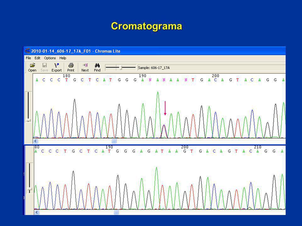 Cromatograma