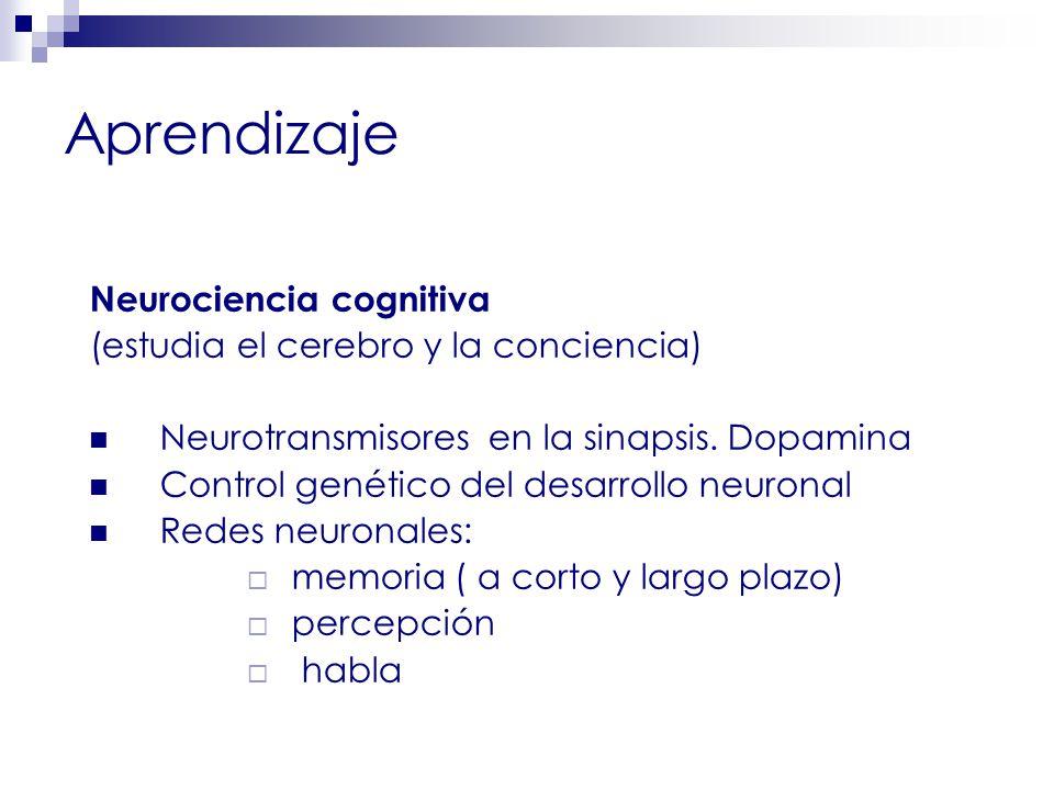 Aprendizaje Neurociencia cognitiva (estudia el cerebro y la conciencia) Neurotransmisores en la sinapsis.