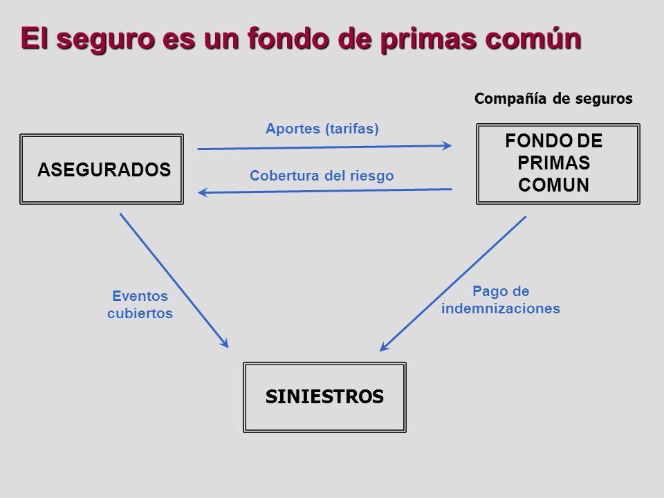La inversión del fondo de primas FONDO DE PRIMAS COMUN Inversión de fondos MERCADO FINANCIERO Compañía de seguros SINIESTROS Pago de indemnizaciones Rentabilidad