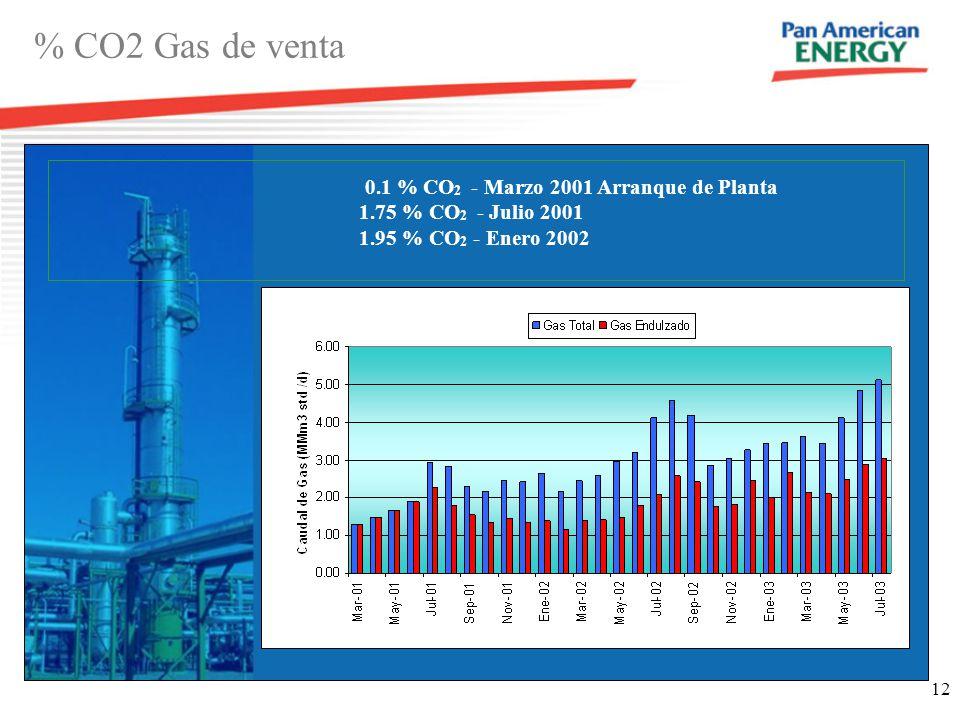 12 % CO2 Gas de venta 0.1 % CO 2 - Marzo 2001 Arranque de Planta 1.75 % CO 2 - Julio 2001 1.95 % CO 2 - Enero 2002