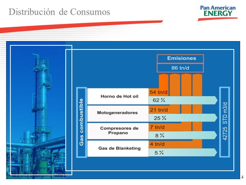 4 Distribución de Consumos