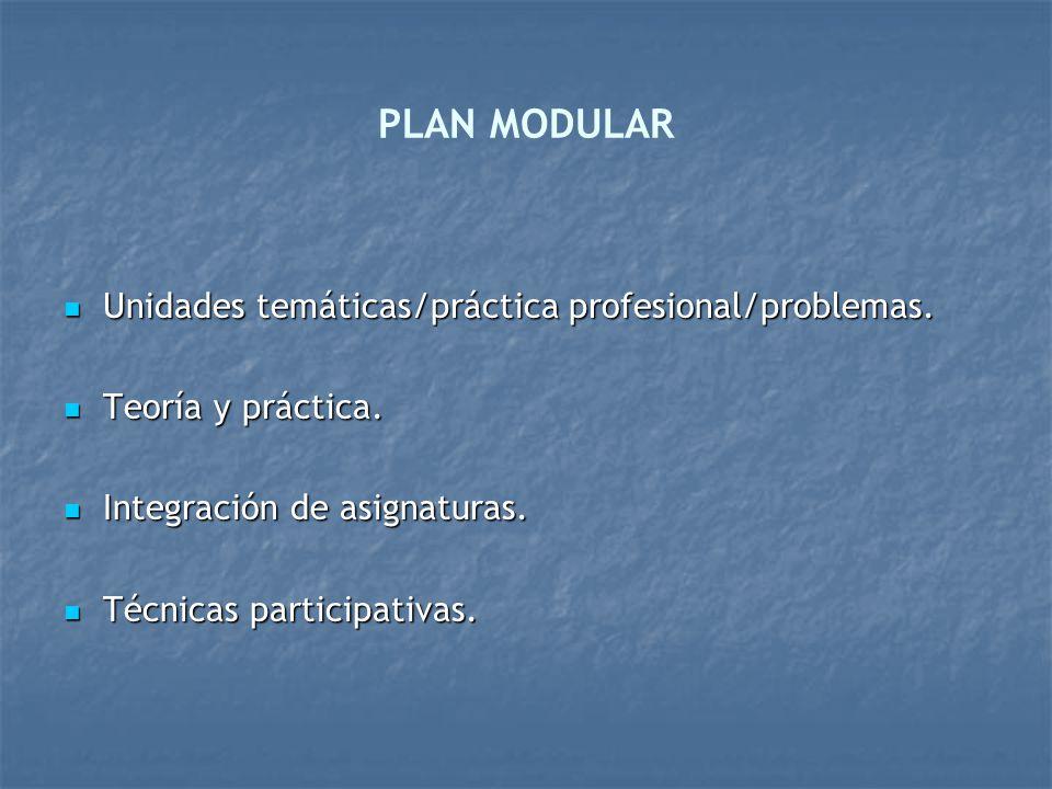 PLAN MODULAR Unidades temáticas/práctica profesional/problemas. Unidades temáticas/práctica profesional/problemas. Teoría y práctica. Teoría y práctic