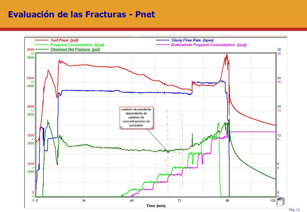 Pág. 13 Evaluación de las Fracturas - Pnet