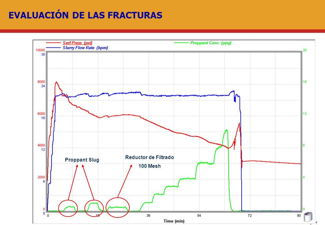 Pág. 14 EVALUACIÓN DE LAS FRACTURAS Proppant Slug Reductor de Filtrado 100 Mesh