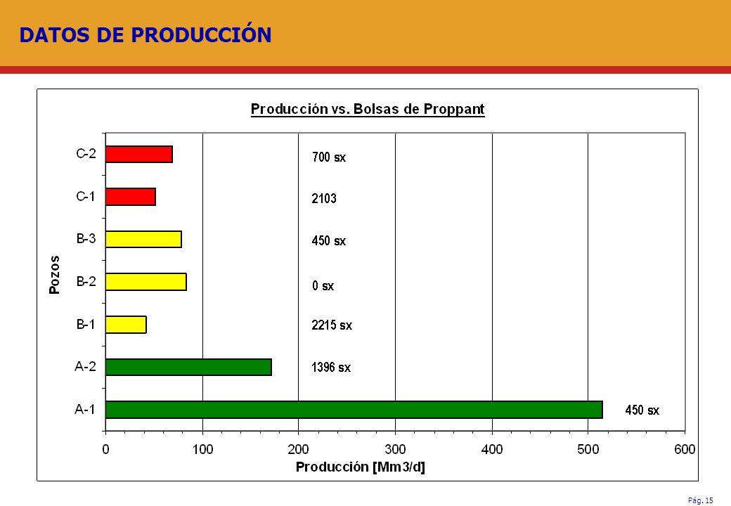 Pág. 15 DATOS DE PRODUCCIÓN