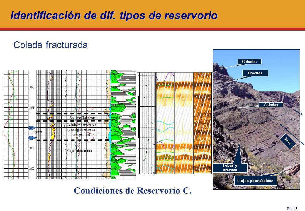 Pág.18 Coladas Brechas Coladas Tobas y brechas Flujos piroclásticos Condiciones de Reservorio C.