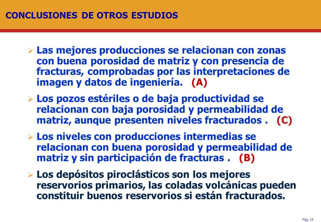 Pág. 19 CONCLUSIONES DE OTROS ESTUDIOS Las mejores producciones se relacionan con zonas con buena porosidad de matriz y con presencia de fracturas, co