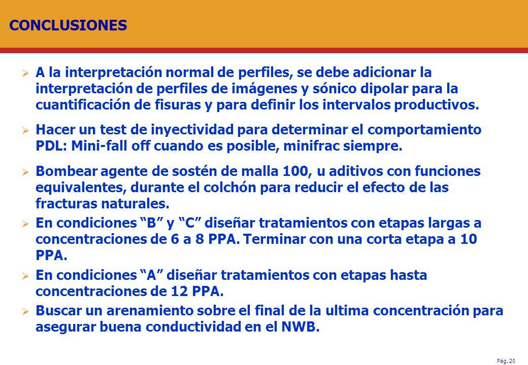Pág. 20 CONCLUSIONES A la interpretación normal de perfiles, se debe adicionar la interpretación de perfiles de imágenes y sónico dipolar para la cuan
