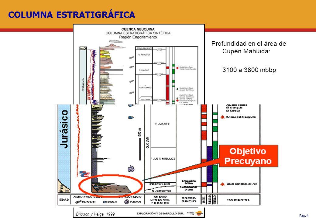 Pág. 4 COLUMNA ESTRATIGRÁFICA Brisson y Veiga, 1999 Profundidad en el área de Cupén Mahuida: 3100 a 3800 mbbp
