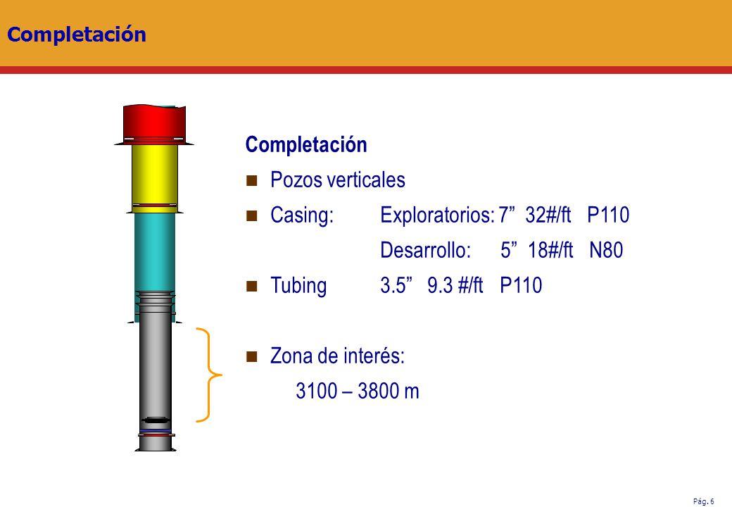 Pág. 6 Completación Pozos verticales Casing:Exploratorios: 7 32#/ft P110 Desarrollo: 5 18#/ft N80 Tubing 3.5 9.3 #/ft P110 Zona de interés: 3100 – 380