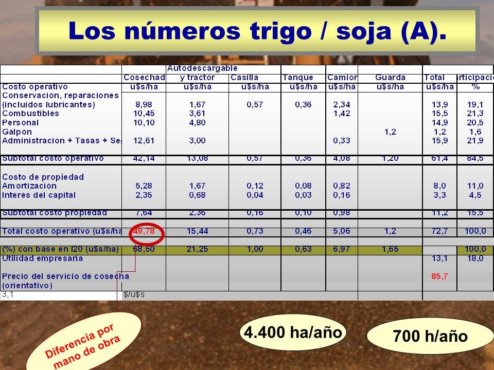 Los números trigo / soja (A). 700 h/año 4.400 ha/año Diferencia por mano de obra