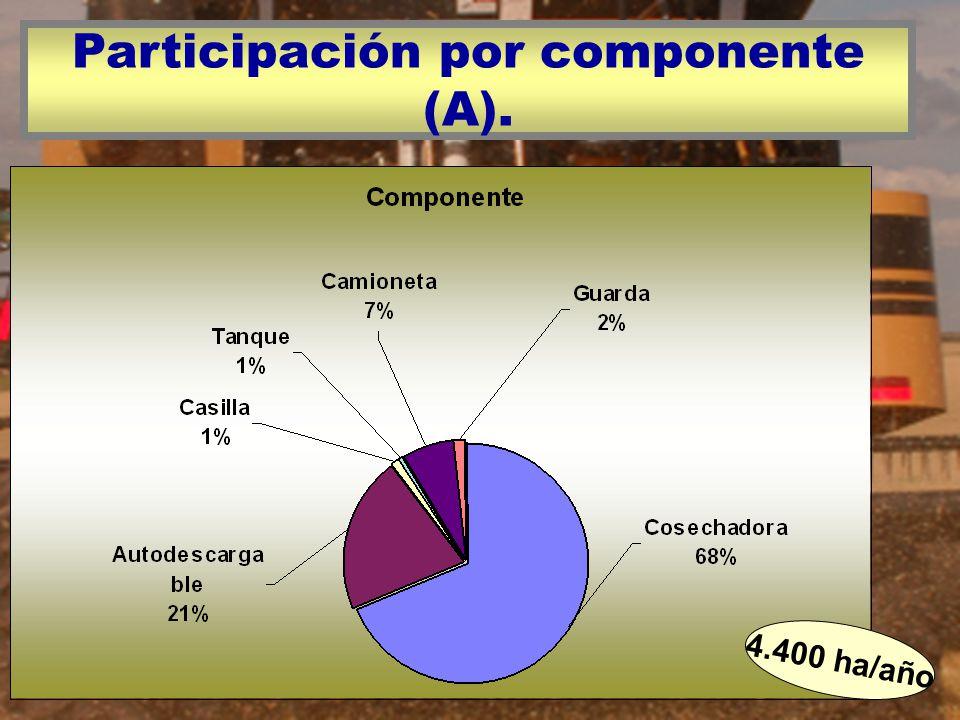 Participación por componente (A). 4.400 ha/año