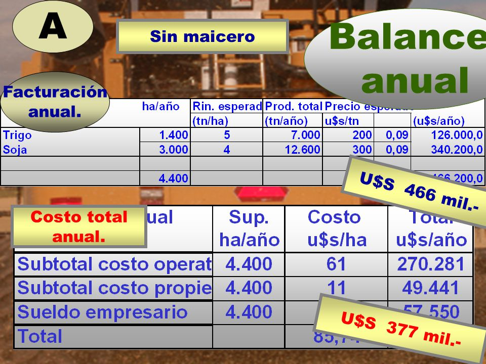 A Sin maicero Balance anual Facturación anual. U$S 466 mil.- Costo total anual. U$S 377 mil.-