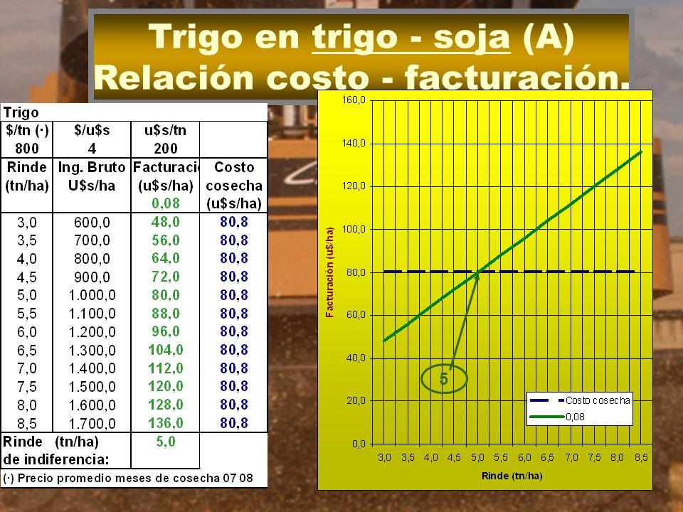 Trigo en trigo - soja (A) Relación costo - facturación. 5