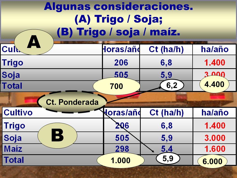 Algunas consideraciones.(A) Trigo / Soja; (B) Trigo / soja / maíz.
