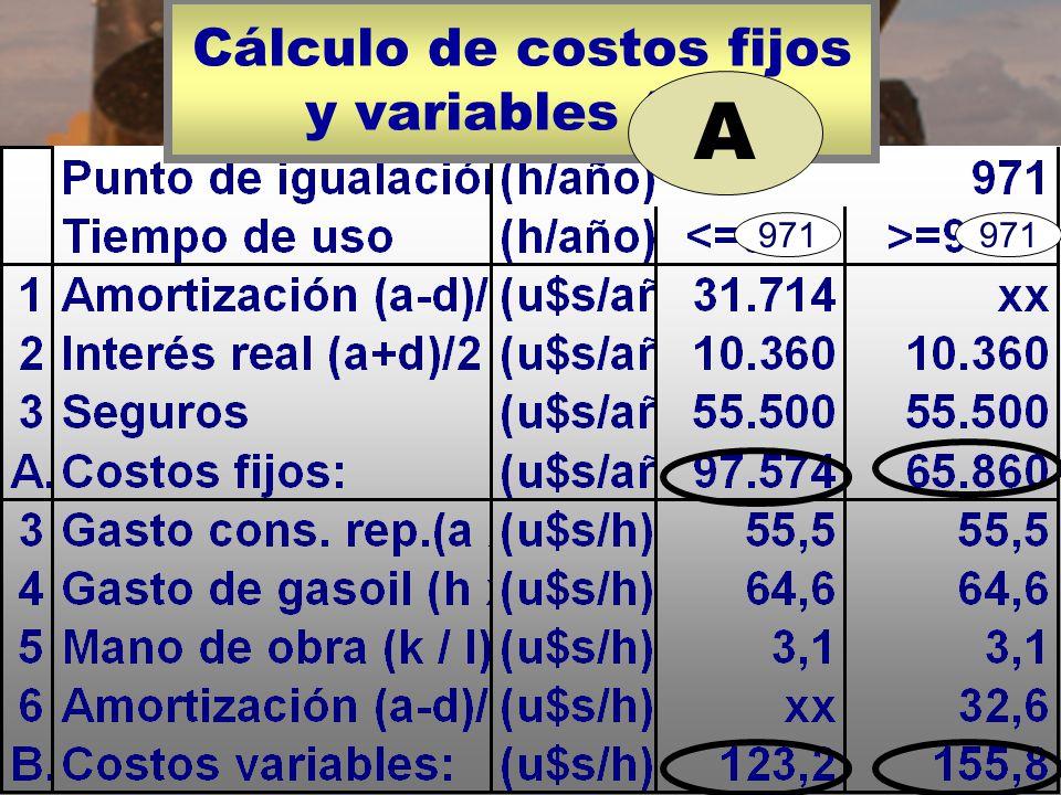 Cálculo de costos fijos y variables (A). A 971