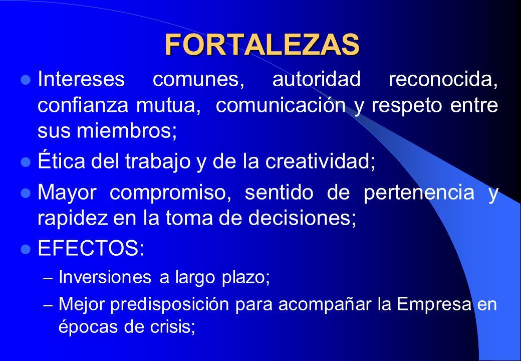 FORTALEZAS Intereses comunes, autoridad reconocida, confianza mutua, comunicación y respeto entre sus miembros; Ética del trabajo y de la creatividad;