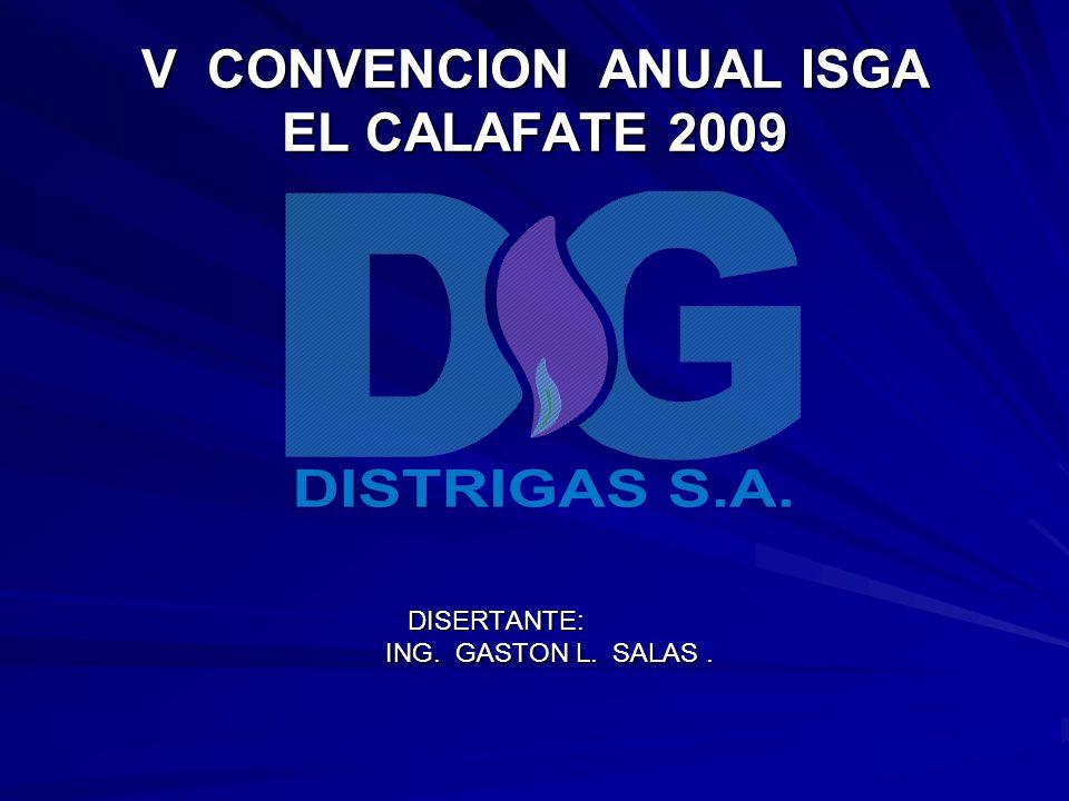 V CONVENCION ANUAL ISGA EL CALAFATE 2009 DISERTANTE: ING. GASTON L. SALAS.