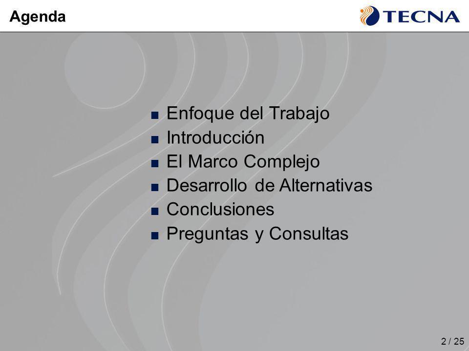 2 / 25 Enfoque del Trabajo Introducción El Marco Complejo Desarrollo de Alternativas Conclusiones Preguntas y Consultas Agenda