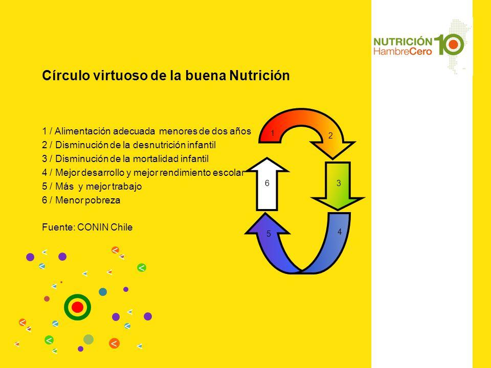 Círculo virtuoso de la buena Nutrición 1 / Alimentación adecuada menores de dos años 2 / Disminución de la desnutrición infantil 3 / Disminución de la mortalidad infantil 4 / Mejor desarrollo y mejor rendimiento escolar 5 / Más y mejor trabajo 6 / Menor pobreza Fuente: CONIN Chile 1 3 4 5 6 2 < < < < < < < < < < < < < < < < < <