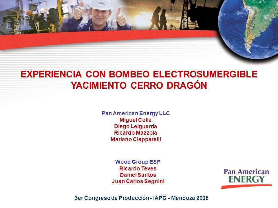 EXPERIENCIA CON BOMBEO ELECTROSUMERGIBLE YACIMIENTO CERRO DRAGÓN Pan American Energy LLC Miguel Colla Diego Leiguarda Ricardo Mazzola Mariano Ciappare