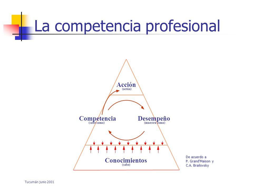 Tucumán junio 2001 Su evaluación: ¿Cómo indicación del alcance de los objetivos de formación.