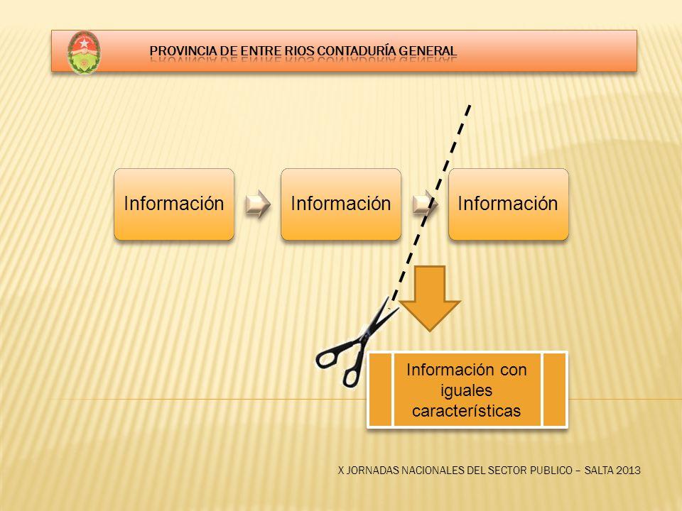 X JORNADAS NACIONALES DEL SECTOR PUBLICO – SALTA 2013 Información Información con iguales características