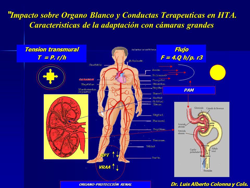 Impacto sobre Organo Blanco y Conductas Terapeuticas en HTA. Caracteristicas de la adaptación con cámaras grandes Impacto sobre Organo Blanco y Conduc