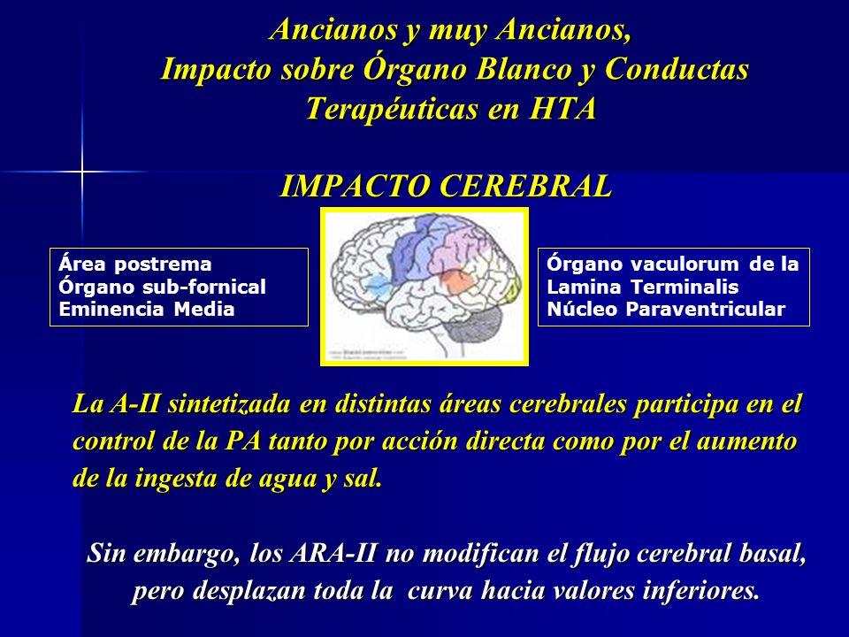IMPACTO CEREBRAL La A-II sintetizada en distintas áreas cerebrales participa en el control de la PA tanto por acción directa como por el aumento de la