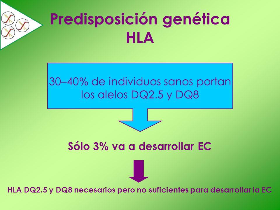 30–40 % de individuos sanos portan los alelos DQ2.5 y DQ8 Sólo 3 % va a desarrollar EC Predisposición genética HLA HLA DQ2.5 y DQ8 necesarios pero no