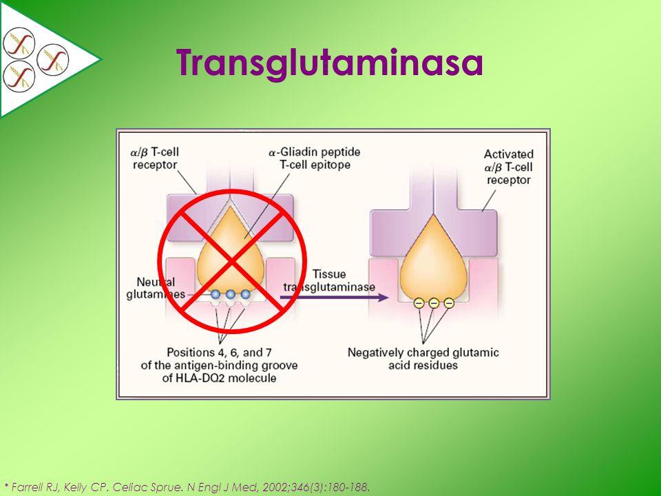 Transglutaminasa * Farrell RJ, Kelly CP. Celiac Sprue. N Engl J Med, 2002;346(3):180-188.